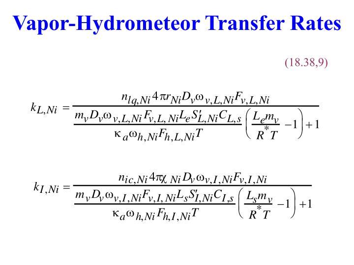Vapor-Hydrometeor Transfer Rates