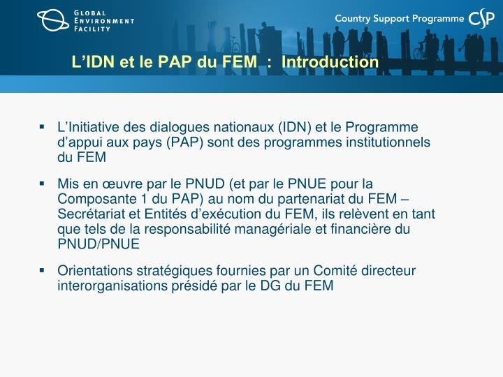L'IDN et le PAP du FEM  :  Introduction