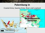 palembang in coastal area swamp area river and lowland