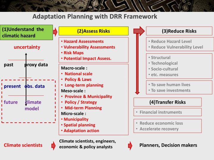 Adaptation Planning with DRR Framework
