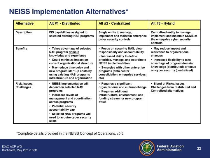 NEISS Implementation Alternatives*
