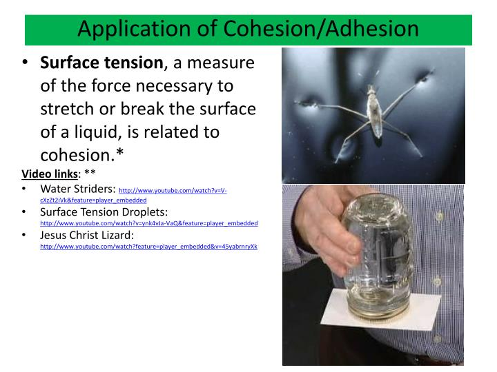 Application of Cohesion/Adhesion