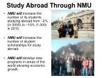study abroad through nmu