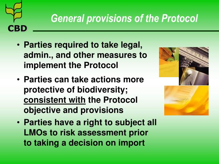 General provisions of the Protocol