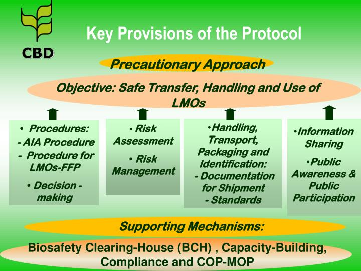 Objective: Safe Transfer, Handling and Use of LMOs