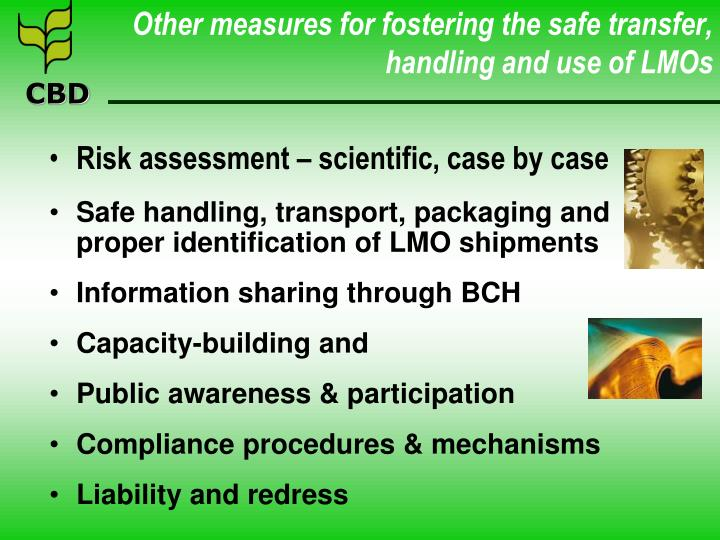 Other measures for fostering the safe transfer, handling and use of LMOs