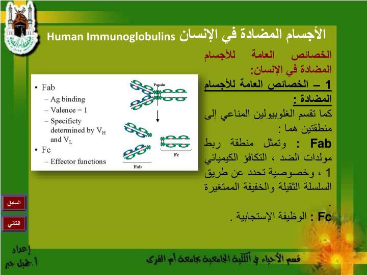 الخصائص العامة للأجسام المضادة في الإنسان: