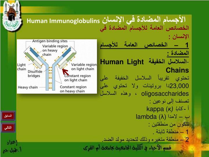 الخصائص العامة للأجسام المضادة في الإنسان :