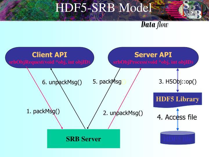 HDF5-SRB Model