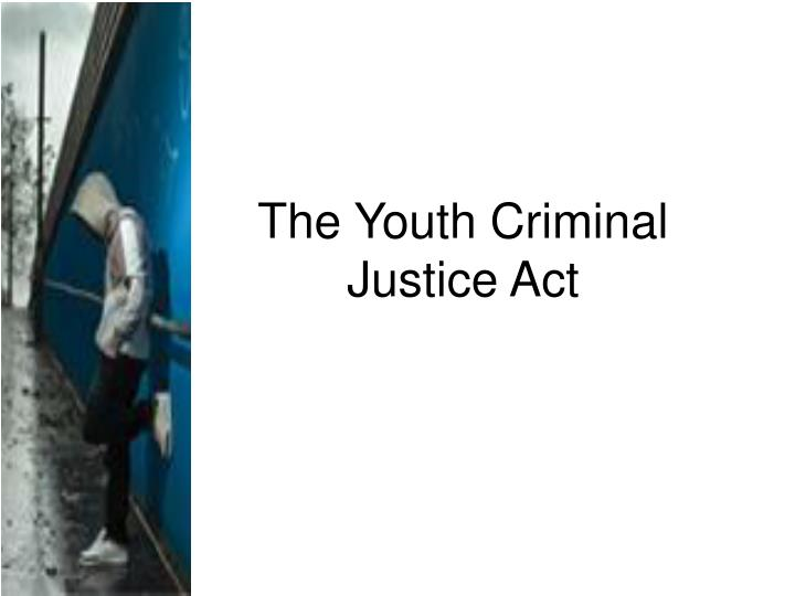 essay crime youth How can the answer be improved.