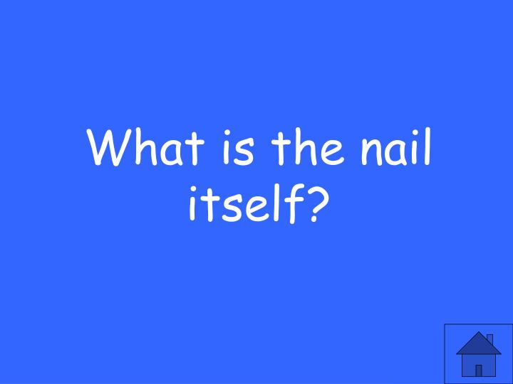 What is the nail itself?