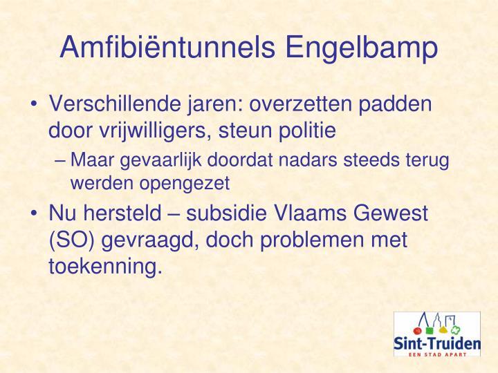 Amfibiëntunnels Engelbamp
