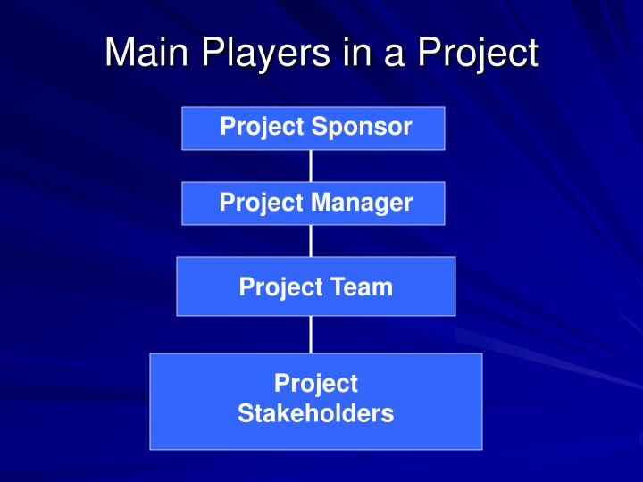 Main Players in a Project