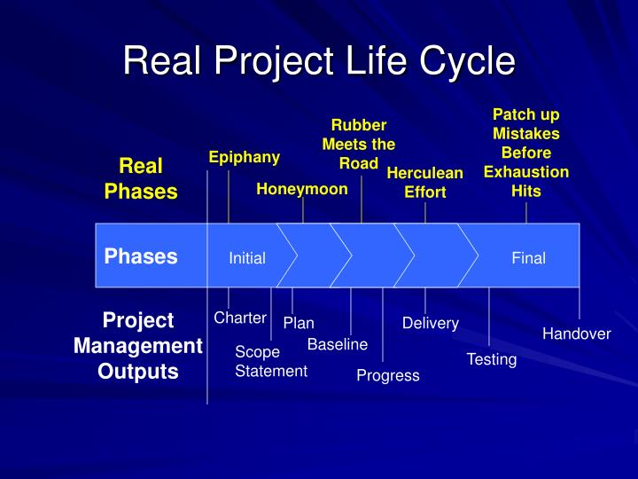 Real Project Life Cycle