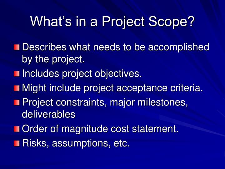 What's in a Project Scope?