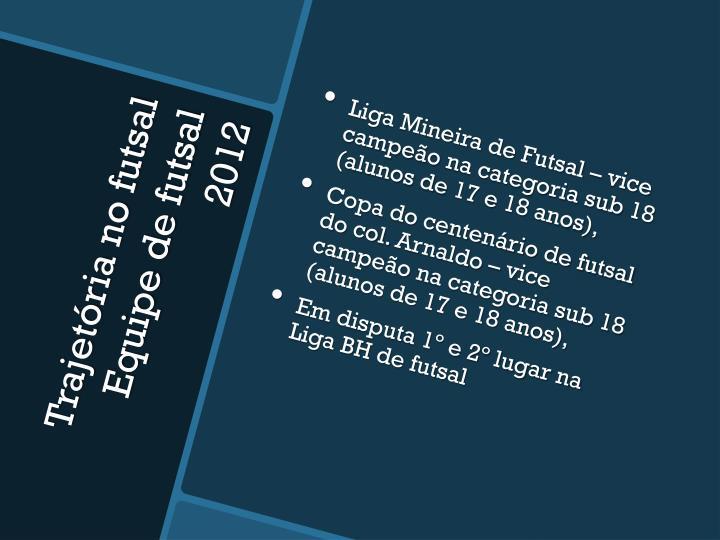 Liga Mineira de Futsal