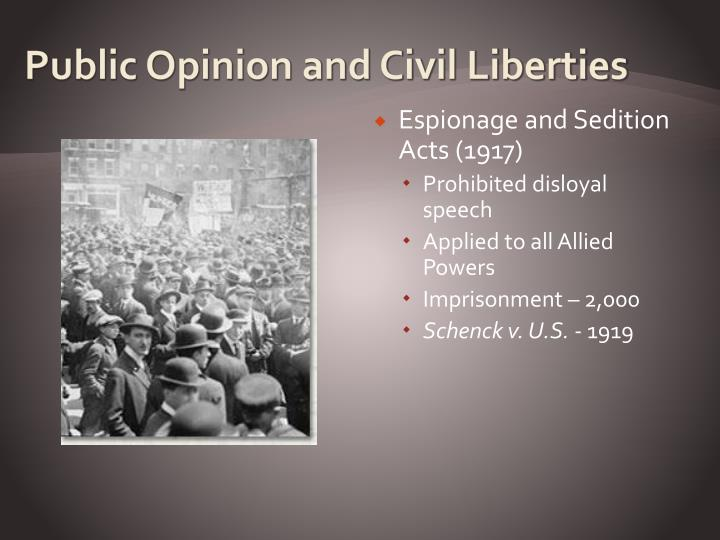 Public Opinion and Civil Liberties