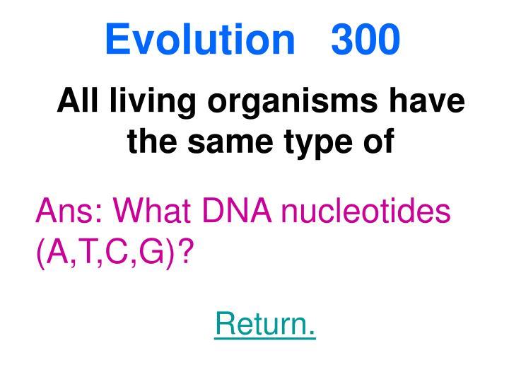 Evolution  300