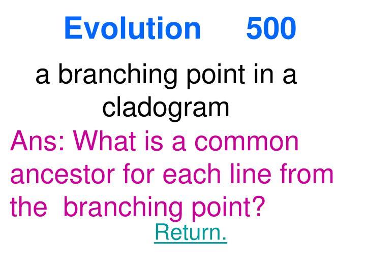 Evolution 500