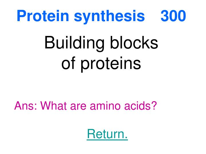 Protein synthesis300