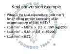 kcal conversion example