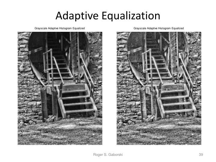 Adaptive Equalization