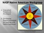 nasp native american workgroup