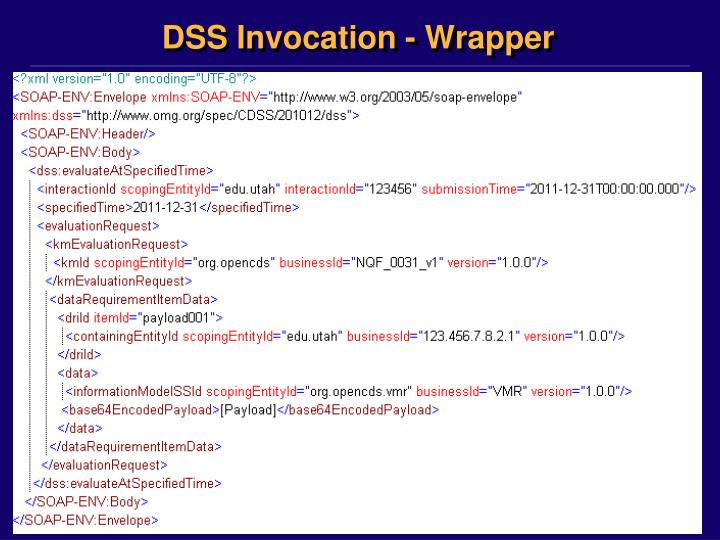 DSS Invocation - Wrapper