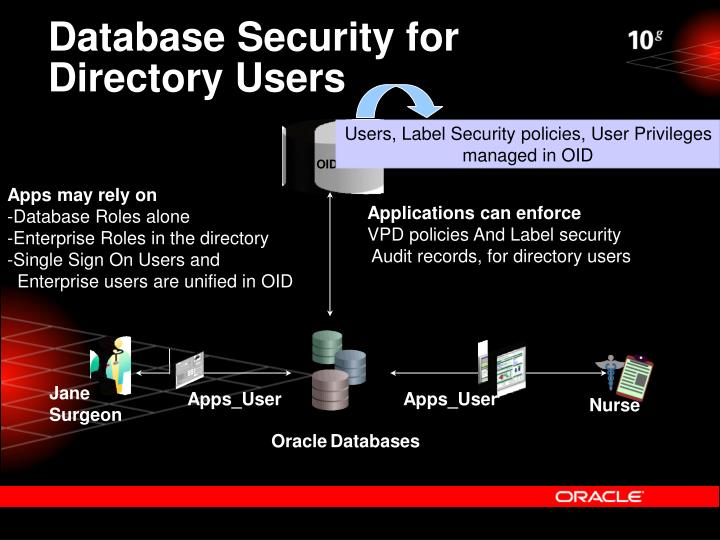 Database Security for Directory Users