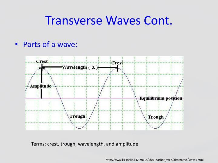 Transverse Waves Cont.
