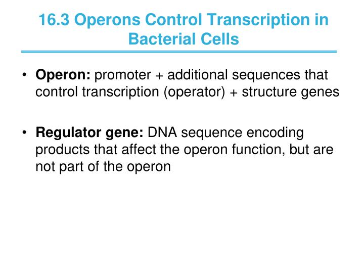 16.3 Operons Control Transcription in Bacterial Cells