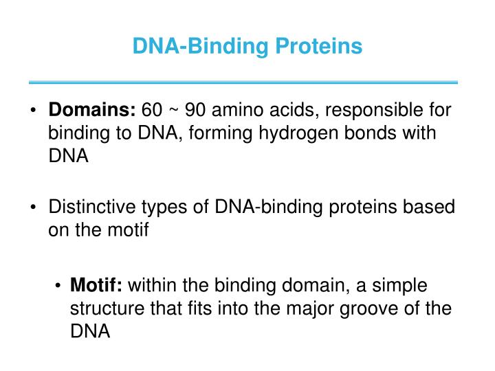 DNA-Binding Proteins