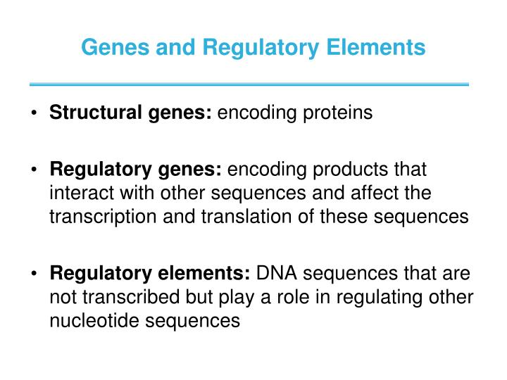 Genes and Regulatory Elements