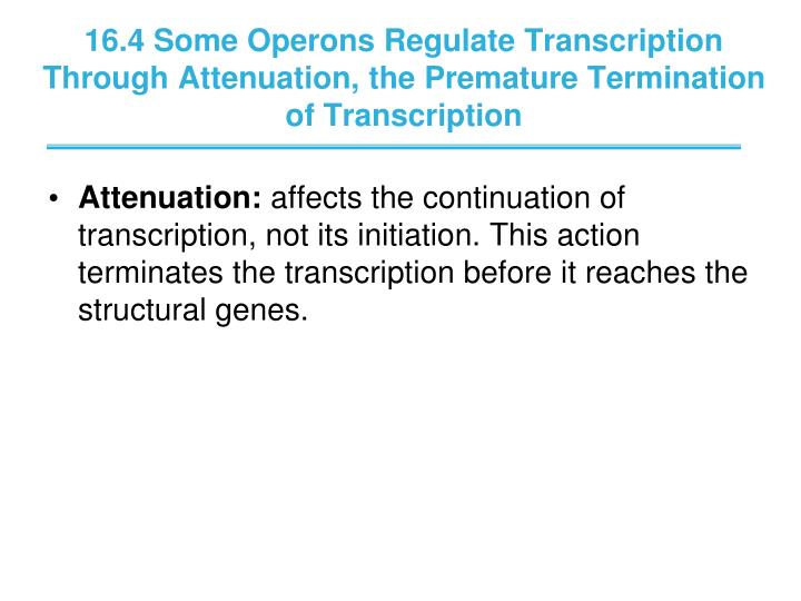 16.4 Some Operons Regulate Transcription Through Attenuation, the Premature Termination of Transcription