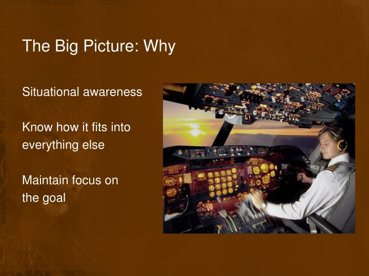 The Big Picture: Why