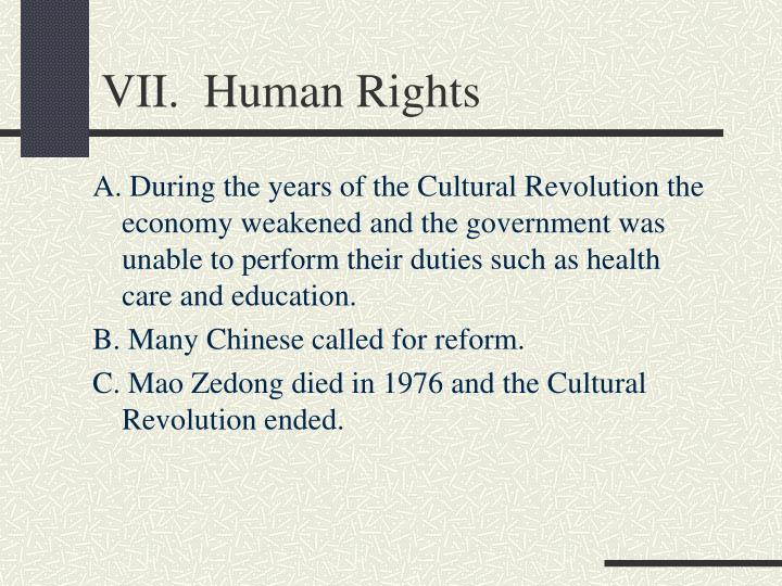 VII.  Human Rights