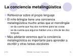 la conciencia metaling stica