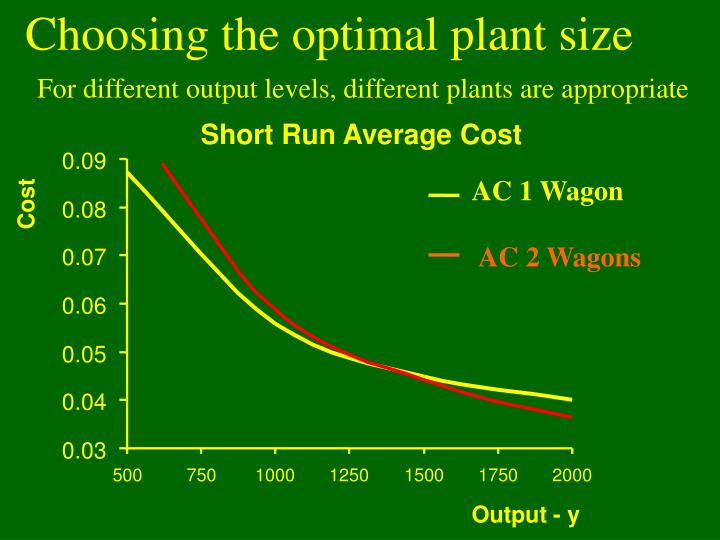 Choosing the optimal plant size