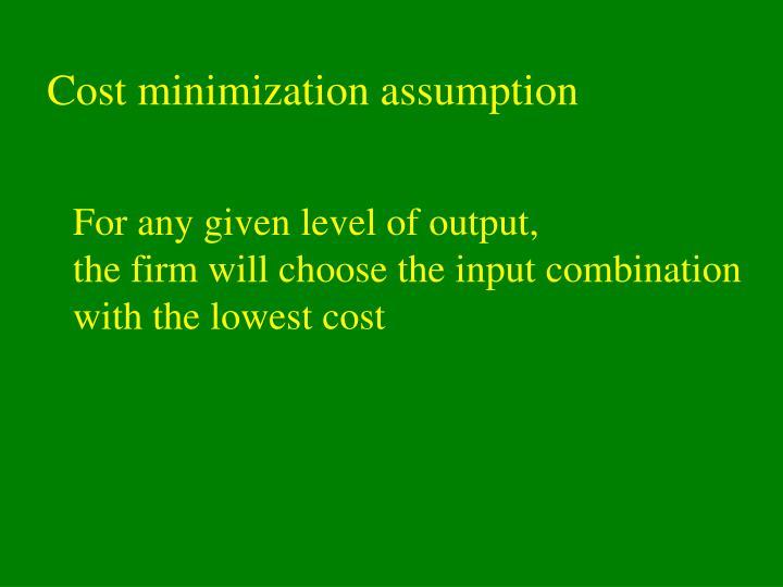 Cost minimization assumption