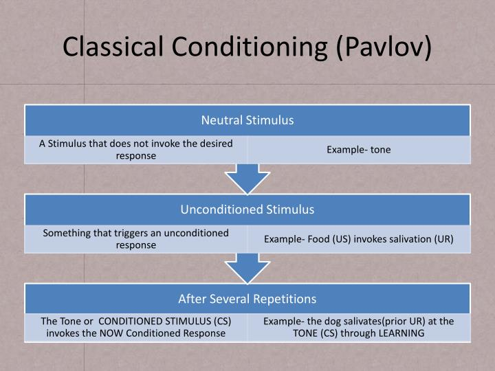 Classical conditioning pavlov