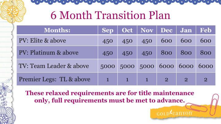 6 Month Transition Plan