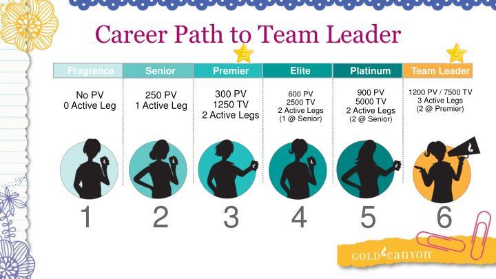 Career Path to Team Leader