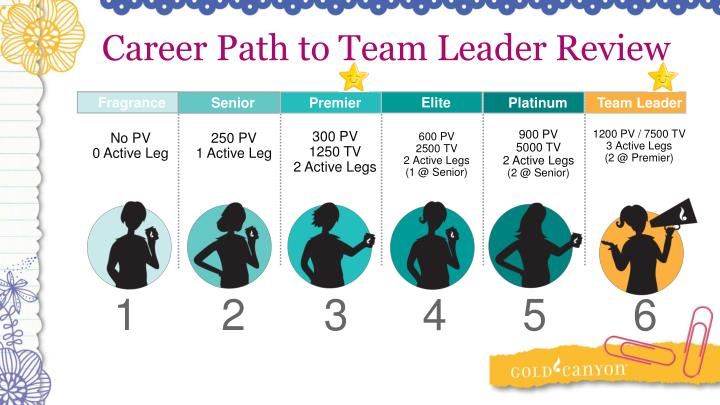 Career Path to Team Leader Review