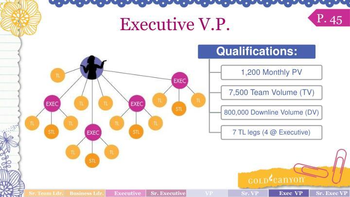 Executive V.P.