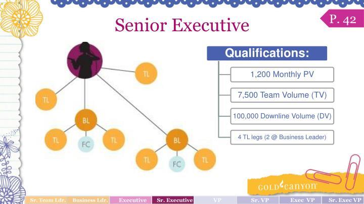 Senior Executive