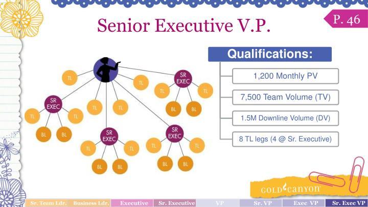 Senior Executive V.P.