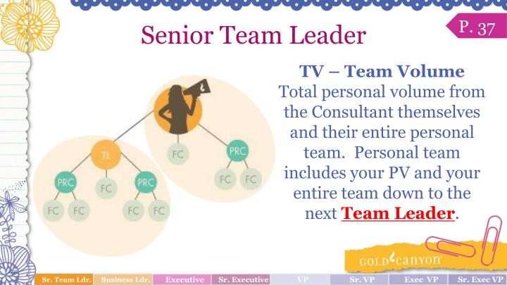 Senior Team Leader