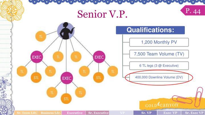 Senior V.P.