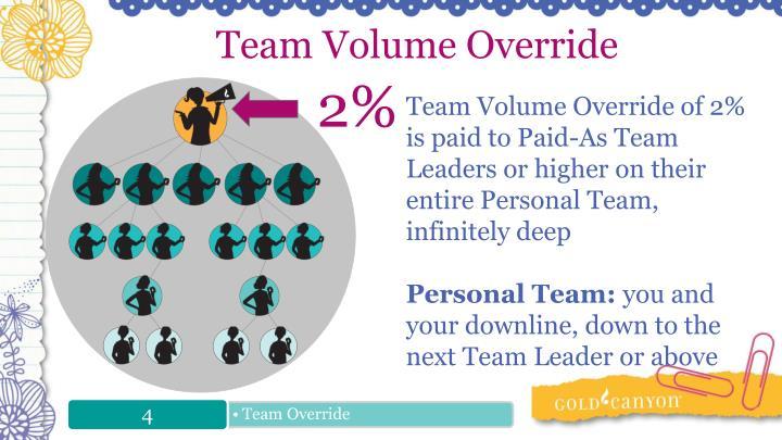 Team Volume Override