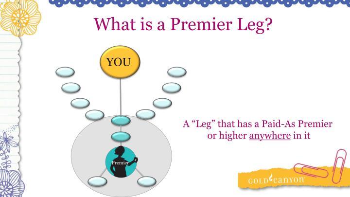 What is a Premier Leg?
